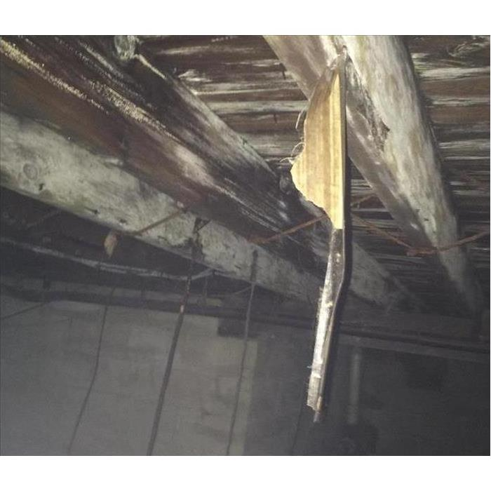 Pictured: Mold on the ceiling in basement