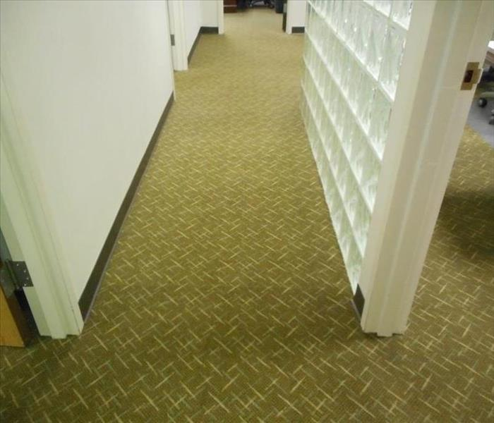 Commercial Selecting a commercial carpet cleaner