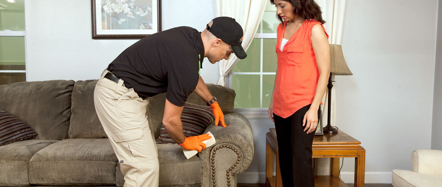 Babylon, NY carpet upholstery cleaning